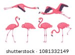 pink flamingo collection in... | Shutterstock .eps vector #1081332149