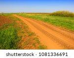 green wheat field and dirt road | Shutterstock . vector #1081336691