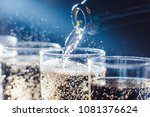 party and holiday celebration... | Shutterstock . vector #1081376624