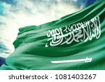 saudi arabia national flag in... | Shutterstock . vector #1081403267