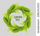 green tea. sprigs of tea in the ... | Shutterstock .eps vector #1081413101