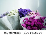 beautiful colorful fresh... | Shutterstock . vector #1081415399