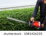 home and garden concept. hedge... | Shutterstock . vector #1081426235