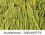 pile of vegetable   Shutterstock . vector #1081445774