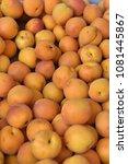 fruit wallpaper  pile of fruit   Shutterstock . vector #1081445867