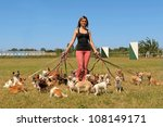 Stock photo portrait of a woman and a large group of chihuahuas 108149171
