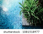 swimming pool decor with nice... | Shutterstock . vector #1081518977