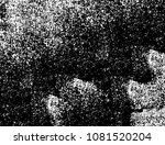abstract unreal black and white ... | Shutterstock . vector #1081520204