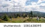 panorama of wild bayerischer... | Shutterstock . vector #1081638095