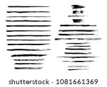 vector collection of semi dry...   Shutterstock .eps vector #1081661369