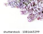 styled stock photo. spring... | Shutterstock . vector #1081665299