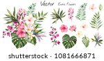 Stock vector tropical vector flowers card with floral illustration bouquet of flowers with exotic leaf 1081666871