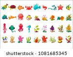 sea creature big set  colorful... | Shutterstock .eps vector #1081685345