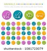 set of 50 elegant universal... | Shutterstock .eps vector #1081723079