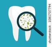 vector illustration. bacteria... | Shutterstock .eps vector #1081737794