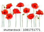 abstract beautiful background... | Shutterstock .eps vector #1081751771
