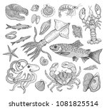 vector seafood big collection... | Shutterstock .eps vector #1081825514