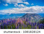 view at carretera austral ... | Shutterstock . vector #1081828124