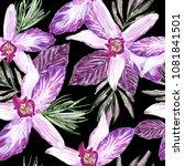 delicate tropical watercolor... | Shutterstock . vector #1081841501