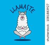 llamaste   namaste' funny... | Shutterstock .eps vector #1081883927