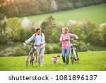 Stock photo beautiful senior couple with bicycles and dog outside in spring nature 1081896137