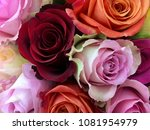 Stock photo  bouquet of colorful roses 1081954979
