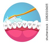 toothbrush brushing smiling... | Shutterstock .eps vector #1082010605