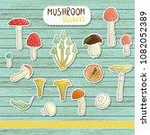 vector set of colored mushroom...   Shutterstock .eps vector #1082052389