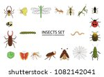 vector set of colored insects.... | Shutterstock .eps vector #1082142041