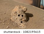 close up of a mud dauber wasp... | Shutterstock . vector #1082195615