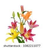 beautiful lily flower bouquet... | Shutterstock . vector #1082211077