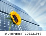 Sunflower with solar panels in the background against the blue sky - stock photo