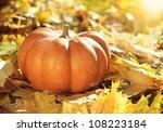 Close Up Of Halloween Pumpkin...