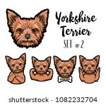 yorkshire terrier dog. bone ... | Shutterstock .eps vector #1082232704
