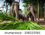 chiang mai  thailand    june 16 ... | Shutterstock . vector #108225581