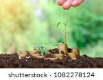 young green plant and watering... | Shutterstock . vector #1082278124