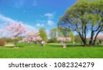 park in blur with people in... | Shutterstock . vector #1082324279