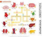 crossword with huge set of... | Shutterstock .eps vector #1082373251