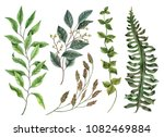 set of watercolor leaves  hand... | Shutterstock . vector #1082469884