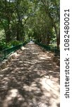 long path surrounded by trees... | Shutterstock . vector #1082480021