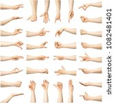 multiple female caucasian hand... | Shutterstock . vector #1082481401