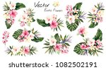 set tropical vector flowers.... | Shutterstock .eps vector #1082502191