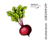 vector hand drawn set of farm... | Shutterstock .eps vector #1082509199