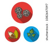 herb and spices flat icons in... | Shutterstock .eps vector #1082647097