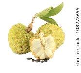 Sugar Apple  Annona Squamosa ...