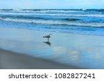 winter beach landscape with... | Shutterstock . vector #1082827241