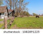 rural landscape in kluki... | Shutterstock . vector #1082891225
