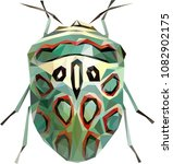 polynomial picasso bug  zulu... | Shutterstock .eps vector #1082902175