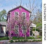 purple house with purple tulip... | Shutterstock . vector #1082931275