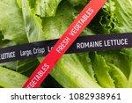 fresh vegetables. romaine... | Shutterstock . vector #1082938961